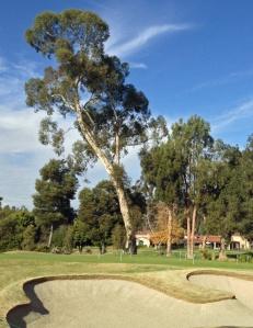 Bunker-at-Rancho-Santa-Fe-Golf-Club