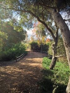 Horse-trail
